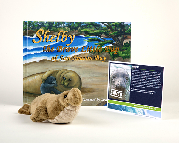 Elephant Seal Adoption Package