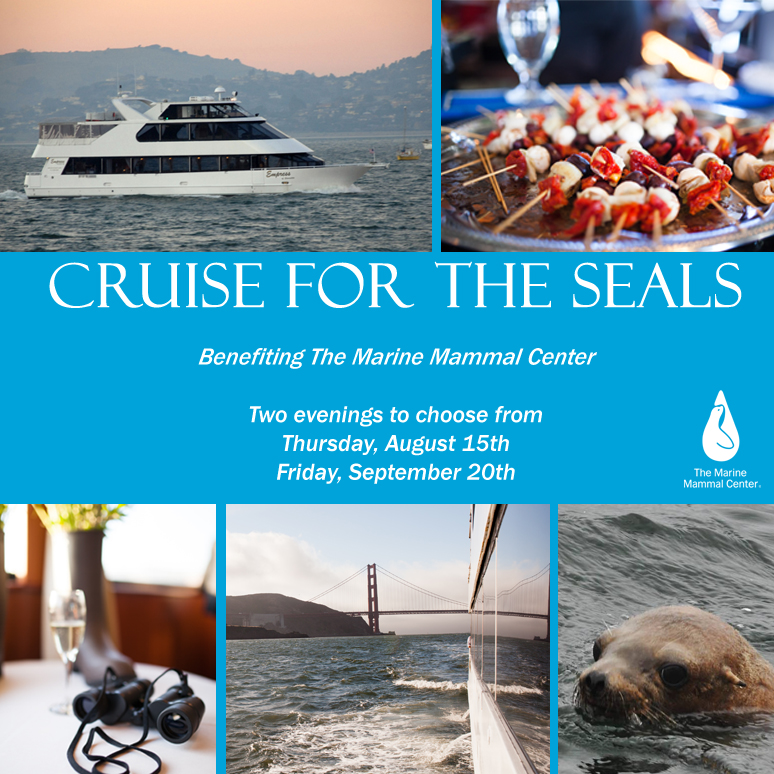cruise for seals cover 2013
