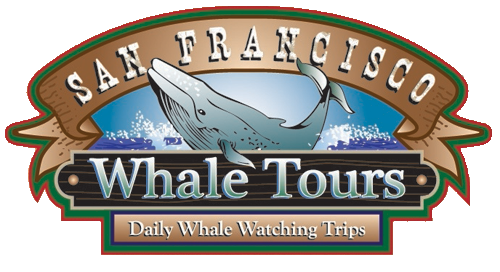 San Francisco Whale Tours Logo