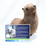 Click here for more information about Adopt-a-Seal® - Leo Adoption Package, with Plush
