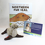 Click here for more information about Adopt-a-Seal® - Fur Seal Adoption Package
