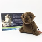 Click here for more information about Adopt-a-Seal® - Percevero Adoption Package, with Plush