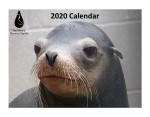 Click here for more information about 2020 Calendar