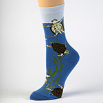 Click here for more information about Sea Turtles in Kelp Socks