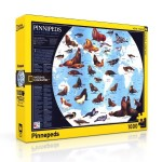 Click here for more information about Pinnipeds Puzzle