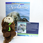 Click here for more information about Adopt-a-Seal® - Calloway Adoption Package, with Book and Plush