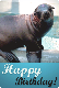 E-card - Happy Birthday - Sea Lion (2)