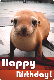 E-card - Happy Birthday - Sea Lion - Sula